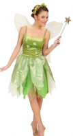 Forest Fairy Costume  (5706)
